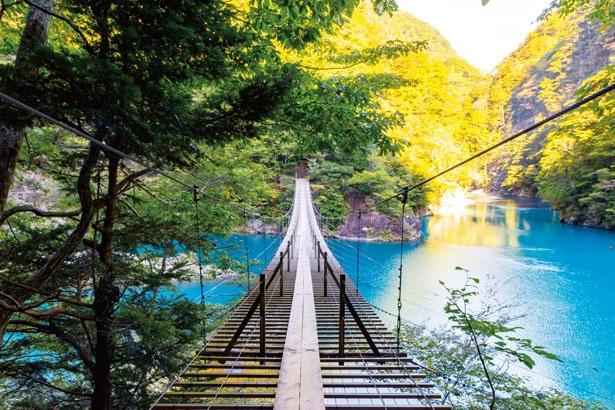 大間ダムが造り出した、コバルトブルーの大間ダム湖にかかる絶景つり橋。背景には南アルプス国立公園の緑が広がる