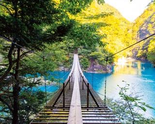 一生に1度は渡りたい!秘境のつり橋から見る、圧巻の景色〈静岡県〉