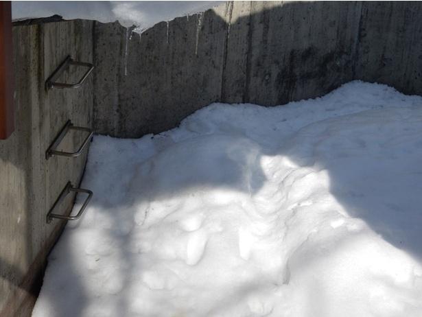 旭山動物園/ホッキョクギツネ舎の掘とハシゴ