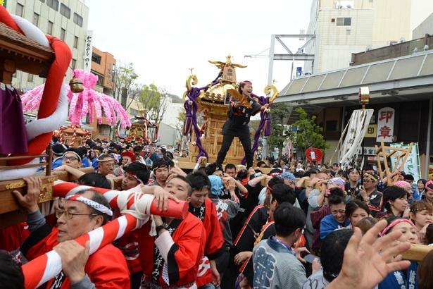 """""""あのマムシ武将""""の祭り!?パレードやトークショー、盛りだくさんのイベントを楽しもう!"""