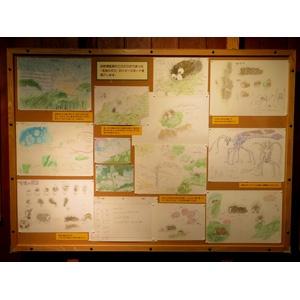 宮崎駿による14分20秒の最新作「毛虫のボロ」、3月21日からジブリ美術館で公開!