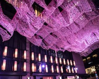 一足早いお花見は、アーティスティックに!「日本橋 桜フェスティバル」