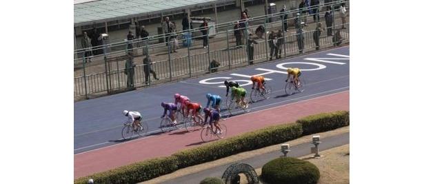 平塚競輪場。1回のレースは3〜5分くらい