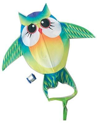 """ピクニックを楽しむ""""ピクニシャン""""の間でにわかに人気の「スポーツカイト」。普通の凧より自由自在に操作でき、飛行スピードも速いのが特徴だ"""