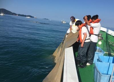 プロの漁師と技を目にしながら、非日常のしらす漁を体験
