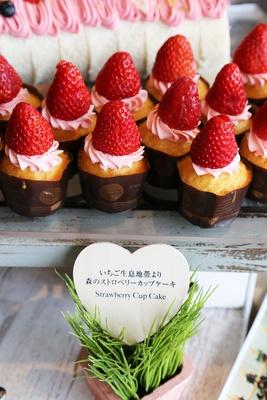 「いちご生息地帯より森のストロベリーカップケーキ」