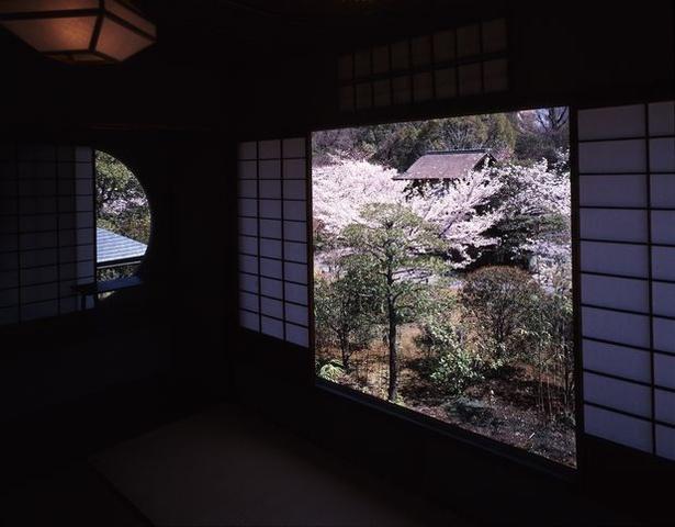 通常非公開の「蘆菴」を期間限定で特別公開