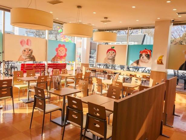 「のっけごはん」でカワイイものとコラボ!和食にこだわったカフェ&ダイニングが竹下通りに誕生