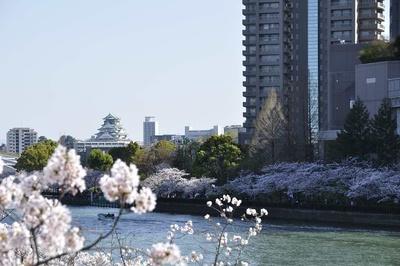 源八橋から見える大阪城