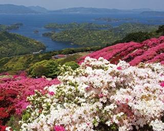 これだけは見ておきたい!九州の美しすぎる春絶景5選