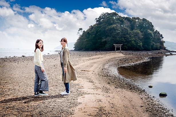 参拝時は、小枝一本持ち帰ってはならないという言い伝えがある「小島神社」