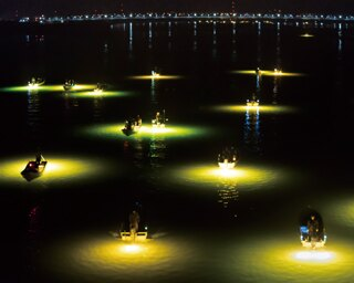 「シラスウナギ漁」の幻想的な眺め! 吉野川の冬から春、深夜の風物詩(徳島「吉野川」)
