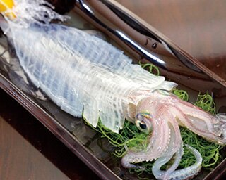 「呼子 お魚処  玄海」の「いかの活き造り」(1人前2160円)。ケンサキイカは、呼子のイカのなかで最も透明度が高く、活き造りを代表する品種だ