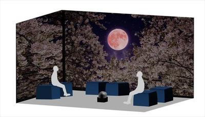 Galaxy Night Blossomイメージ写真