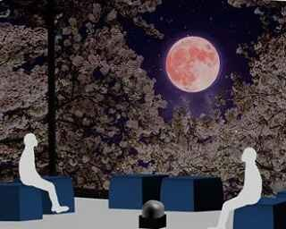 今年の桜を見逃した人に!バーチャルの夜桜を楽しめる原宿のスポット