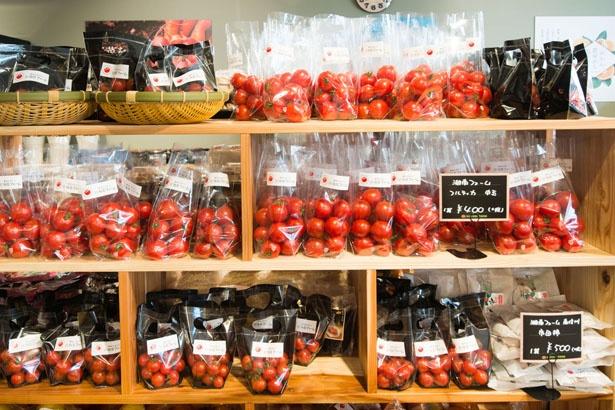【写真を見る】ひと口にプチトマトといっても、大きさや種類が豊富。これぞ生産者ならではの強み