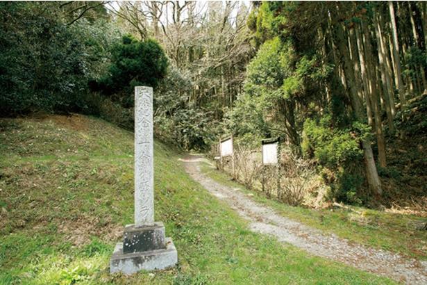 「下合瀬の大カツラ」の入口付近には「天然記念物」と記された石碑と案内板がある