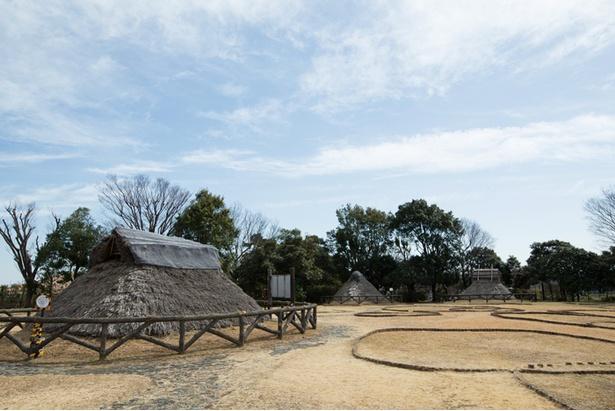 「横浜市三殿台考古館」には縄文時代の住居の模型なども展示されている