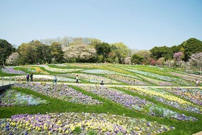 【写真を見る】「大花壇」の舗装や花壇の中にはハートが隠れているので、探してみて!