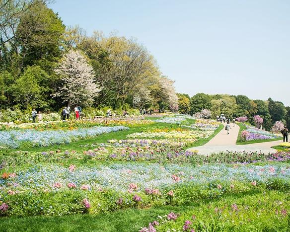今年も横浜が花と緑であふれる!「ガーデンネックレス横浜2018」へ行こう!