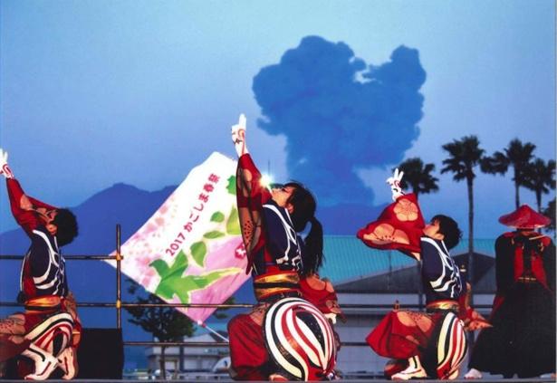 【写真を見る】ハンヤ節を織り交ぜた南九州最大のよさこい祭り かごしま春祭大ハンヤ2018 / 4月28日(土)、29日(祝)