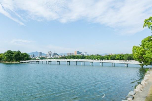 ビルが立ち並ぶ福岡の中心部にあり、池と緑の美しい景観が広がる