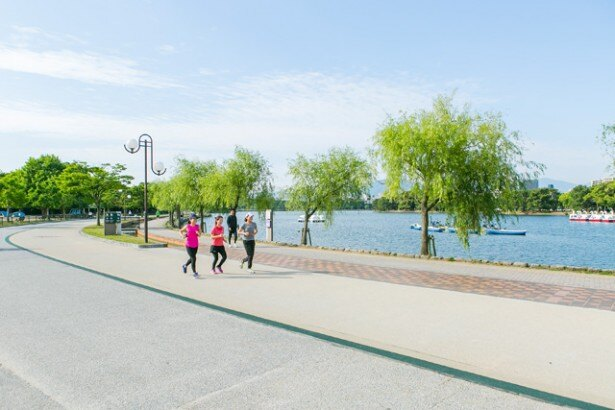 池を周回するコースは周約2kmで、足に優しくジョギングに適するといわれるゴムチップ舗装で負担が少なくて走りやすいのも嬉しい