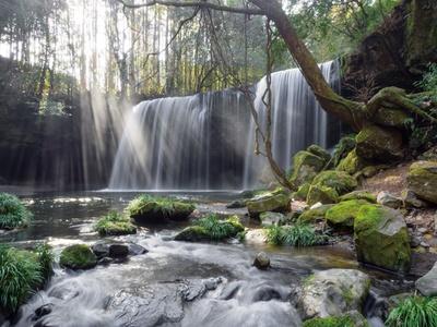 【写真を見る】「鍋ヶ滝」の眺めもさることながら、心地よい木漏れ日と青々と茂る自然に包まれた好ロケーション