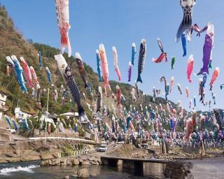 温泉めぐりと一緒に楽しみたい杖立温泉きっての一大イベント「杖立温泉鯉のぼり祭り」