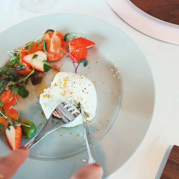 イタリア産ブッラータチーズのカプレーゼにはイチゴを使用している。生クリームの入ったブッラータチーズとイチゴが相性抜群
