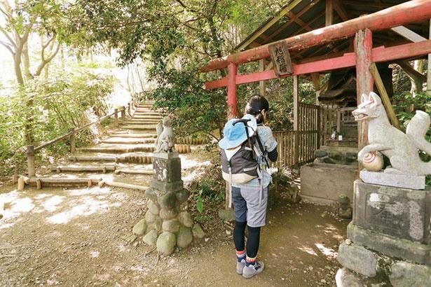 高尾山・陣馬山コースは、難易度が高く上級者向け。四季折々の美しい自然を肌で感じることができる