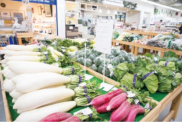 店内中央には毎朝、農家から直送される新鮮な野菜がズラリと陳列される。週末は早い時間に品薄になることもあるので朝のうちがおすすめ