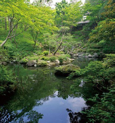 滝と湧水が爽やか!駅チカで涼を得られる殿ヶ谷戸庭園