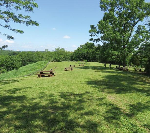 田園風景も広がる緑豊かな丘陵地でのんびりリラックス!小山田緑地