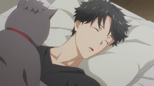 「多田くんは恋をしない」第3話の先行カットが到着。多田を見守るべき存在…ニャンコビッグ!
