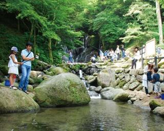 GW期間限定!福岡・糸島で自然と触れ合える「白糸の滝 ヤマメ釣り祭り」が開催