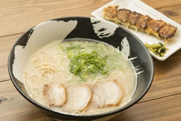 「博多らーめん ちゃんぽんひるとよる」の「らーめん」(600円)、「焼き餃子」(330円)。豚骨×鶏ガラのスープは臭みがなく、まろやか