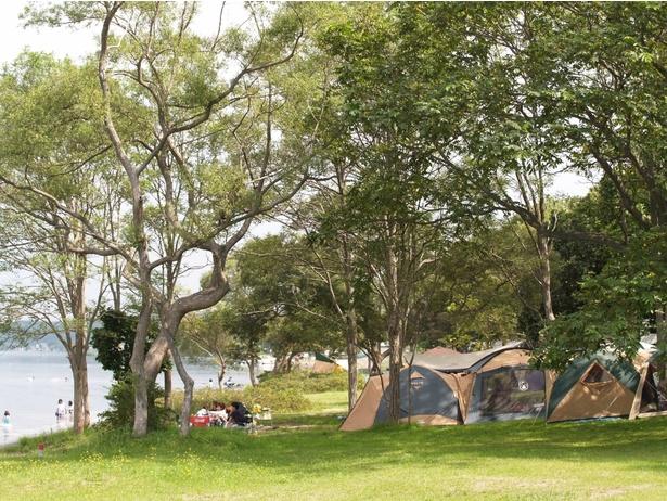 湖のほとりでのんびりキャンプを楽しもう