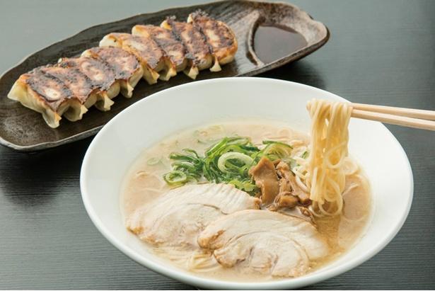 博多くまちゃんらぁめん /醤油とんこつ(600円)、大名餃子(8個390円)