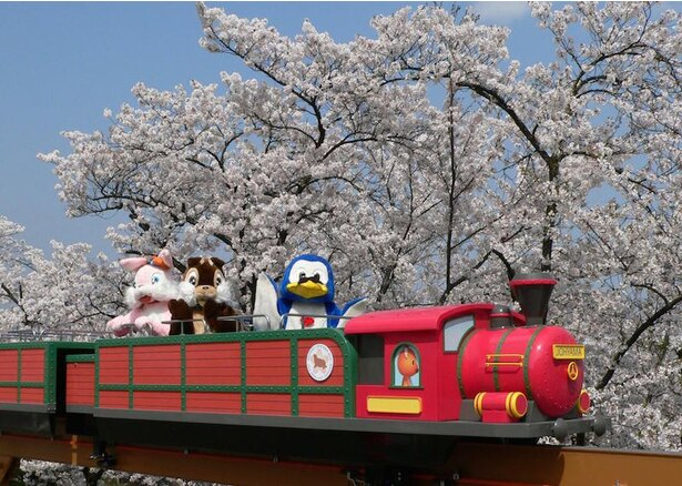 【写真を見る】善光寺に隣接する城山公園内に位置し、遊園地も有する「長野市城山動物園」
