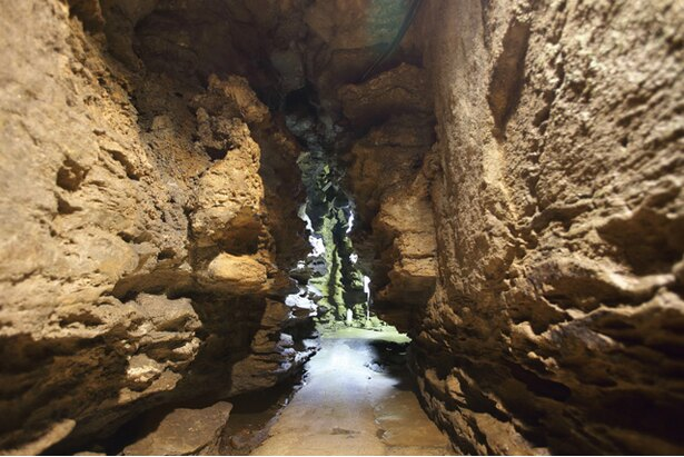 七ツ釜鍾乳洞 / 黄金色に輝く砂岩の壁や、なめらかな形のフローストーンなどが見られる。約3000万年前に築かれた芸術品