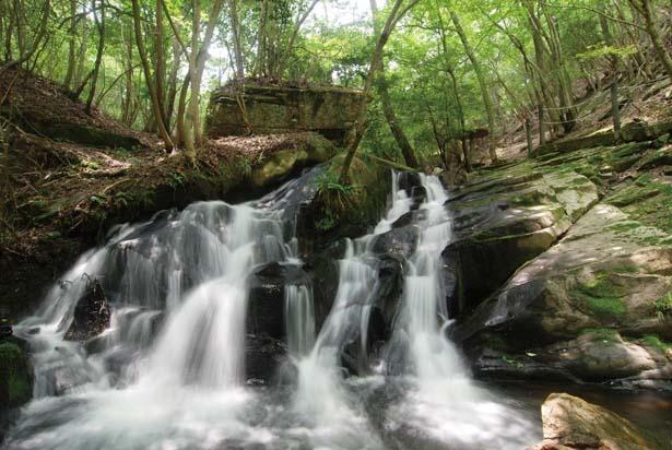 GRAXから約500m先に入口のある「るり渓自然公園・渓流歩道」/GRAX PREMIUM CAMP RESORT 京都 るり渓