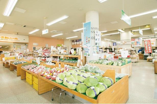 道の駅水辺プラザかもと / 農産物や総菜、加工品が充実