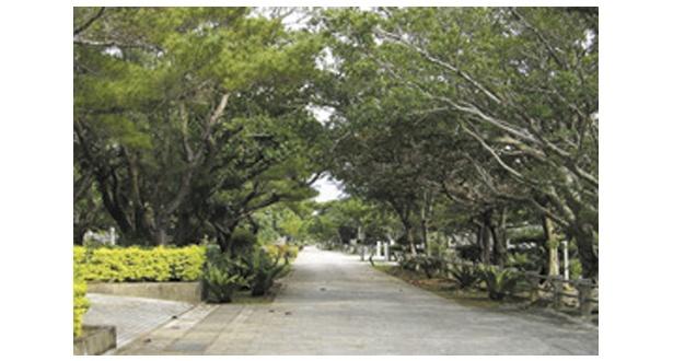 32府県の慰霊碑がある霊域参道