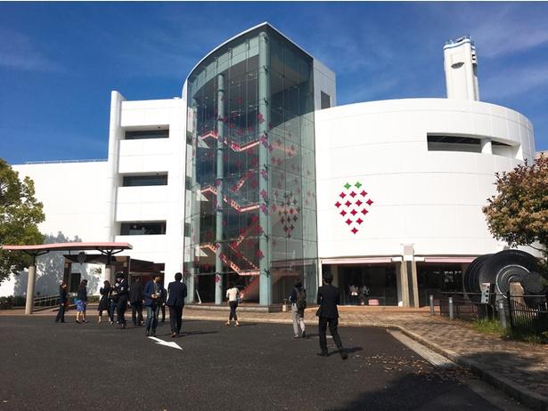 壁面にもイチゴの模様が描かれている「TOKYO STRAWBERRY PARK」