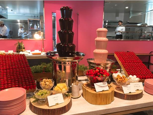 チョコレートとイチゴチョコレート、両方のファウンテンを食べ比べたい!