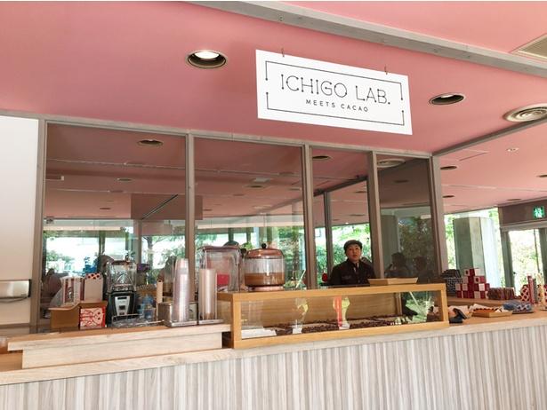 「ICHIGO LAB.」ではスイーツやドリンクを販売!