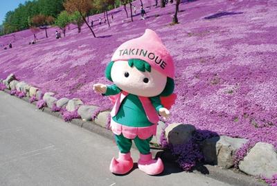滝上町のご当地キャラクター、芝桜の妖精「ピコロ」