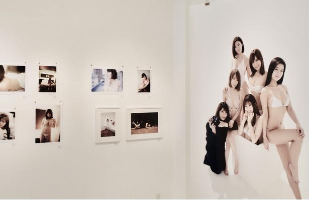 会場内に展示されている写真は枚数限定で販売