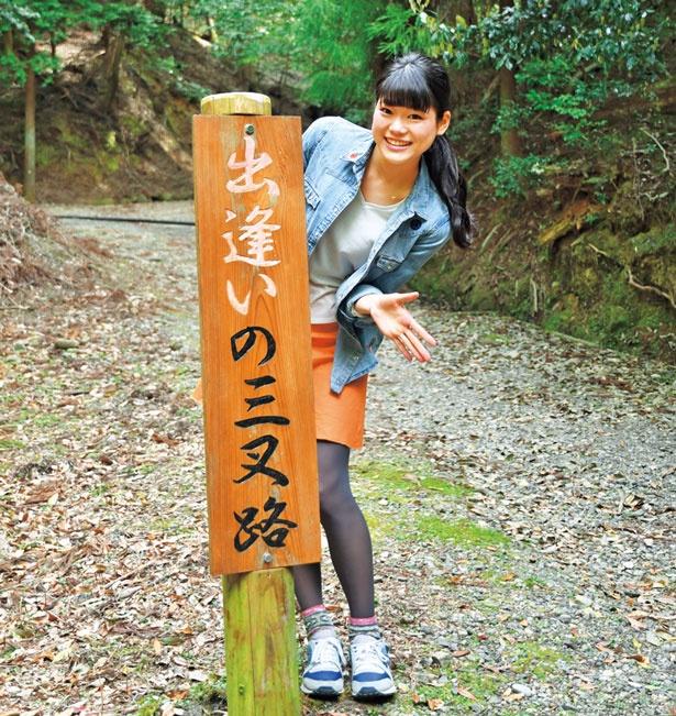 北側遊歩道へ/春日山遊歩道